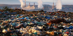How PETase Enzymes Can Solve Plastic Pollution Problem FI