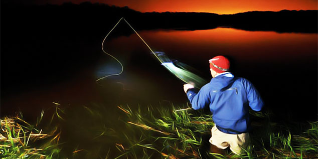 Best Headlamps for Fishing-FI
